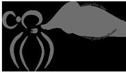 aromaxia perfumes logo